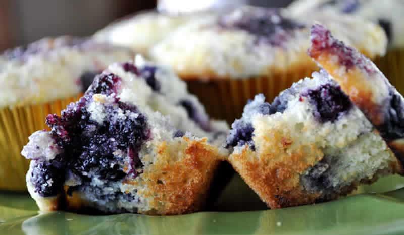 Muffins légers aux myrtilles avec thermomix